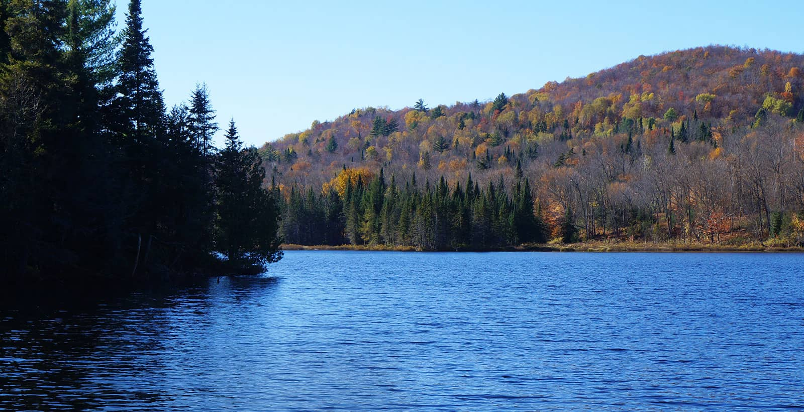 Terrain à vendre avec accès au lac dans les Laurentides