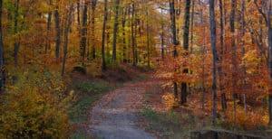 paysage Réserve Haute-Provence