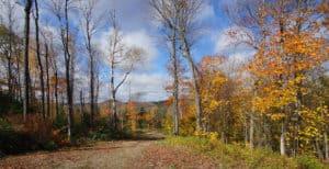 Terrain avec vue à Morin-Heights