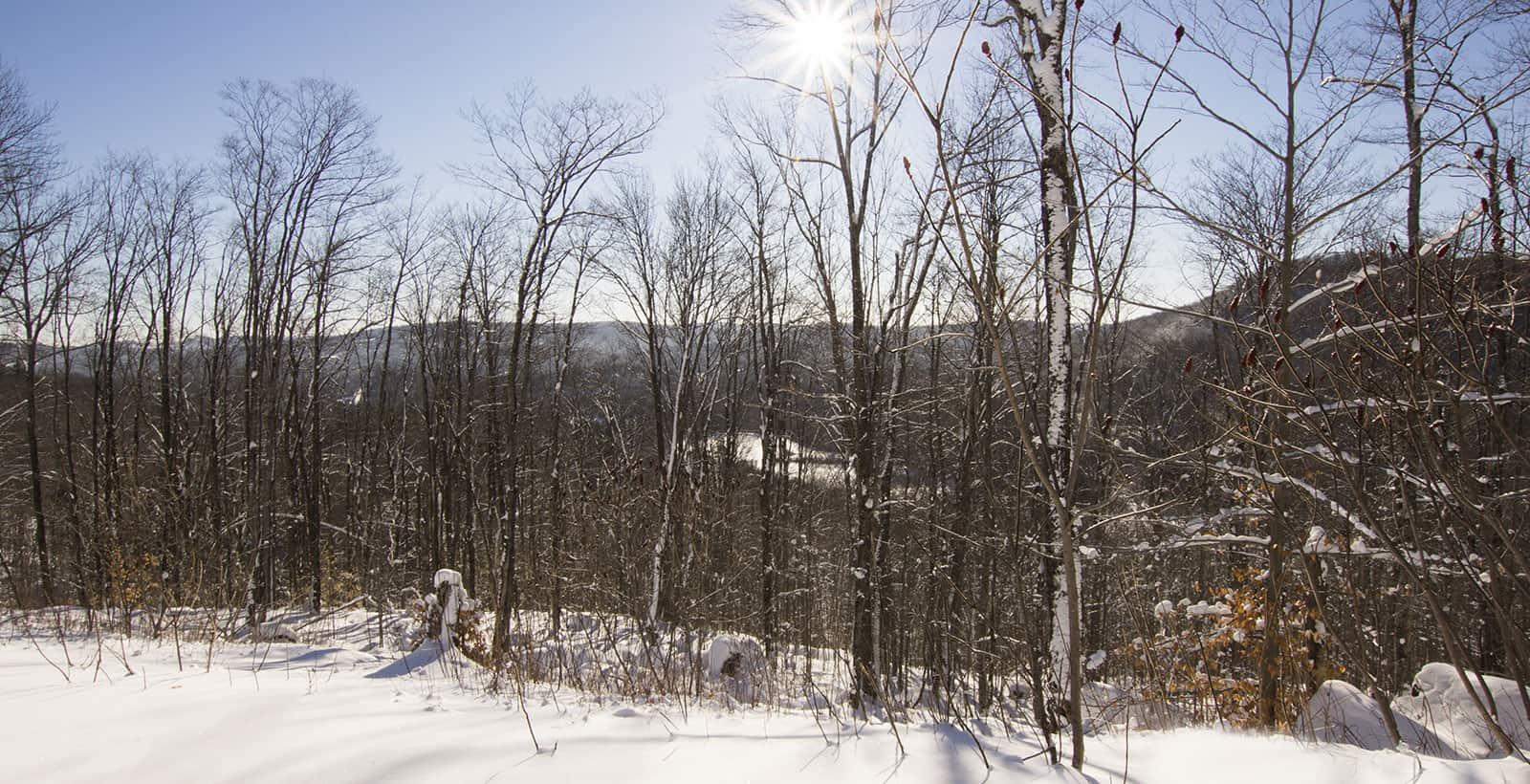 Terrain avec vue sur les montagne dans les Laurentides en hiver