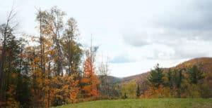 Terrain avec vue sur les montagne dans les Laurentides
