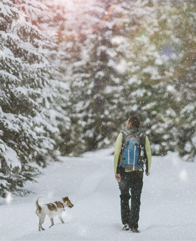 homme et son chien en nature